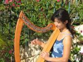 ハープ レッスン - Harp Lesson